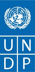 გაეროს განვითარების პროგრამა (UNDP)
