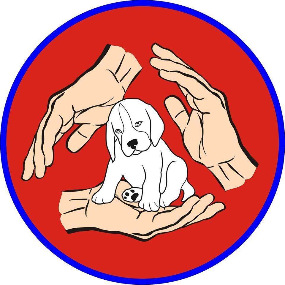 ცხოველთა დახმარების, უფლებების დაცვისა და რეაბილიტაციის ორგანიზაცია