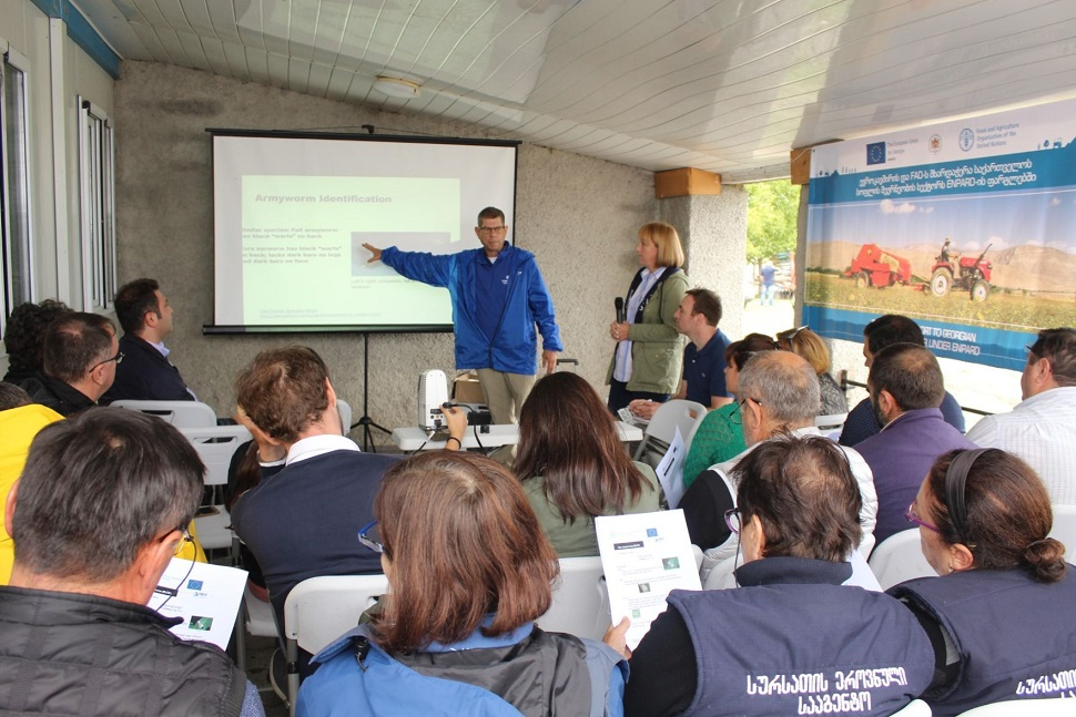 EU and FAO share best practices of Conservation Agriculture and Integrated Pest Management