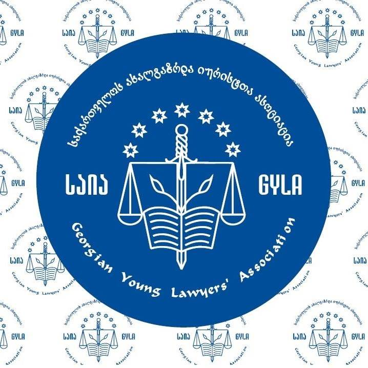 GYLA critically appraises an initiative of Members of Parliament