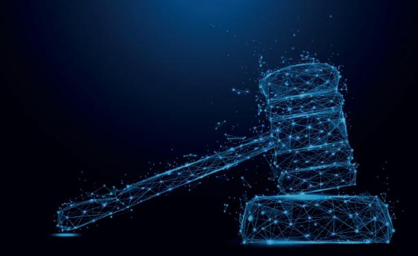 საიამ სისხლის სამართლის საქმეების სასამართლო მონიტორინგის შედეგების პრეზენტაცია გამართა