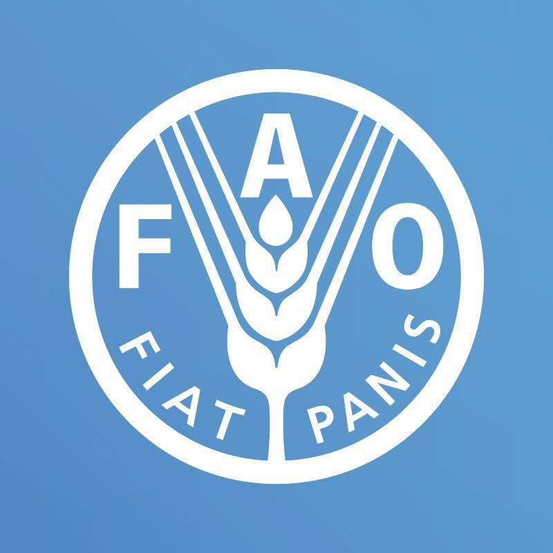 გაეროს სურსათის და სოფლის მეურნეობის ორგანიზაცია ( FAO)