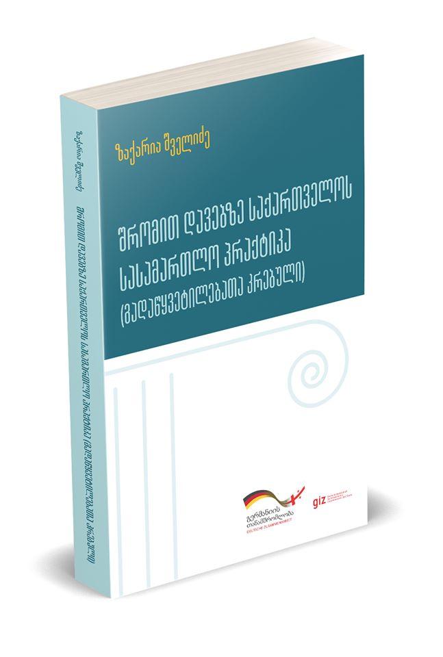 Labour Case Law (Compilation of Court Decisions)