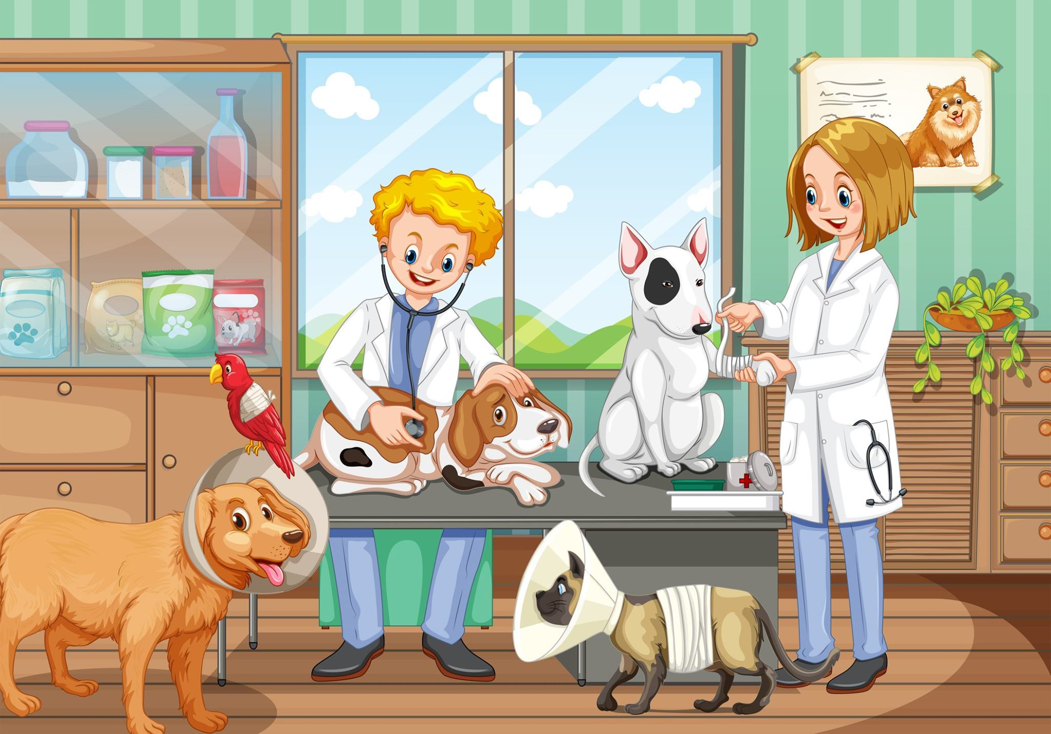 The short-term vocational training courses in Vet Technicians