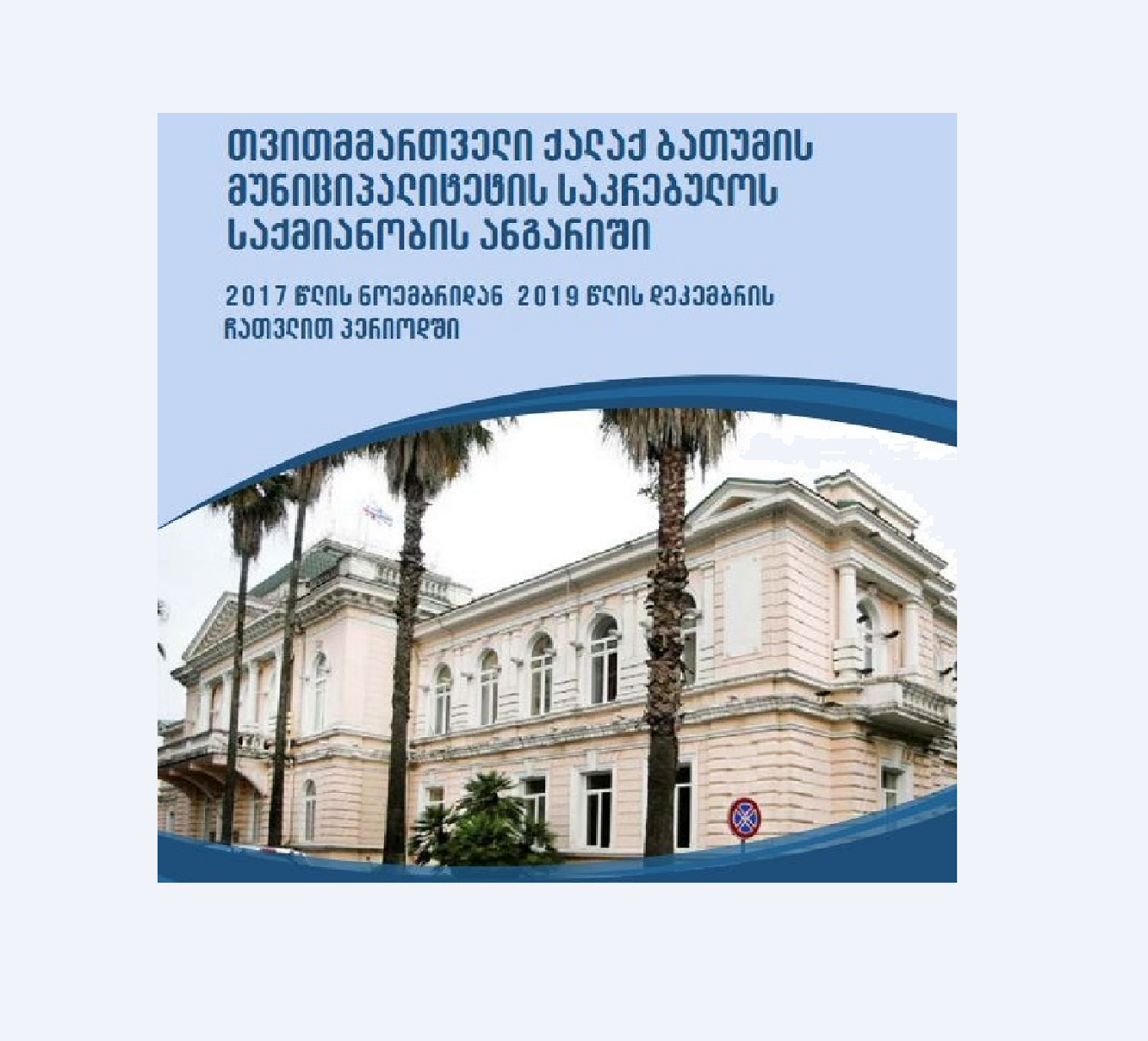Report on Activities of the Council of the Self-Governing City of Batumi Municipality