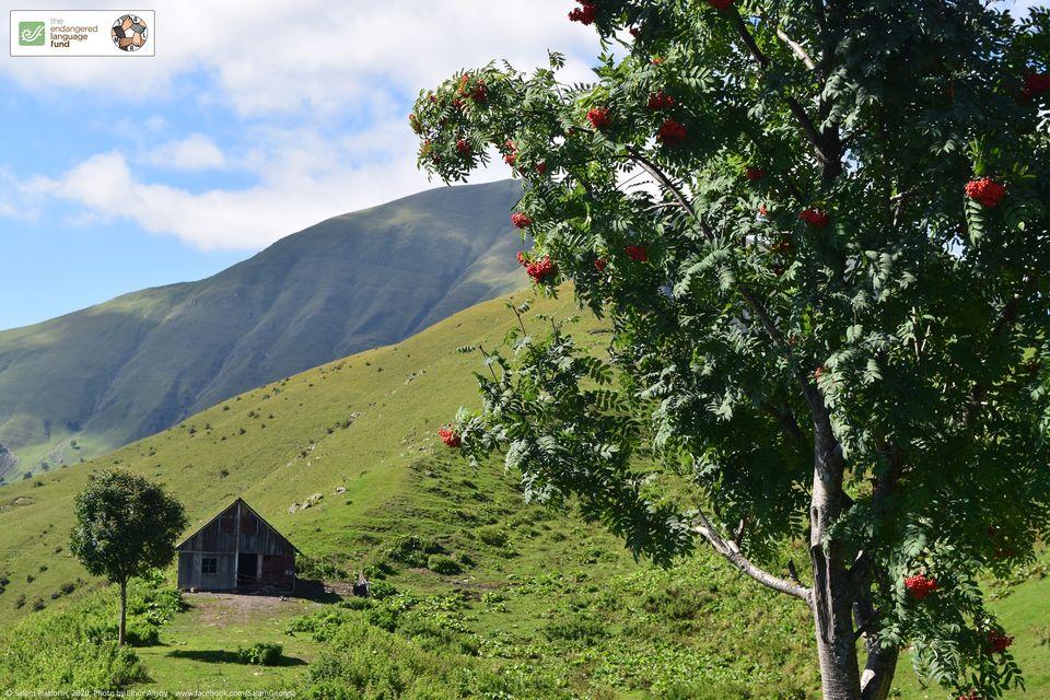 Documenting endangered Ibero-Caucasian languages
